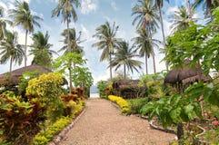 热带异乎寻常的庭院 库存图片