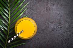 热带异乎寻常的饮料和棕榈在黑背景分支 免版税库存图片