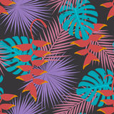 热带异乎寻常的棕榈mostera留给heliconia垂悬的花艺术无缝的样式 免版税库存图片