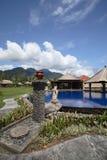 热带房子的池 免版税库存图片