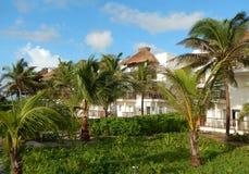 热带手段别墅 库存照片