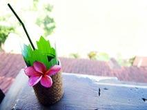 热带手段阳台,冷饮 免版税库存照片