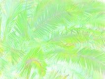 热带抽象的叶子 向量例证