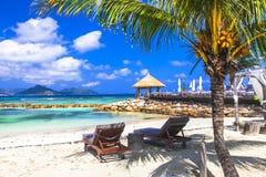 热带放松-塞舌尔群岛海岛 Mahe 库存照片