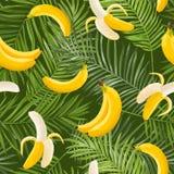 热带无缝的样式用香蕉和棕榈叶 墙纸的,织品夏天花卉异乎寻常的背景 免版税图库摄影