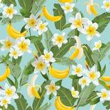 热带无缝的样式用香蕉和棕榈叶 墙纸的,织品夏天花卉异乎寻常的背景 免版税库存照片