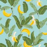 热带无缝的样式用香蕉和棕榈叶 墙纸的,织品,包装纸夏天花卉背景 免版税库存照片