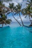 热带无限 免版税库存图片