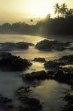 热带日出,多巴哥 图库摄影