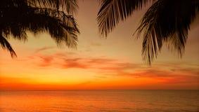 热带日落时间背景惊人的自然看法在古巴人科科岛海岛的 免版税库存照片
