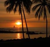 热带日落 免版税库存照片