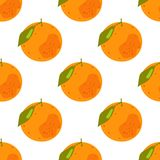 热带柑橘水果的无缝的样式 向量例证