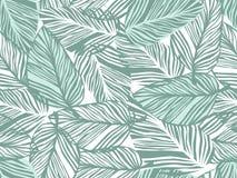 热带样式,棕榈叶无缝的传染媒介花卉背景 皇族释放例证