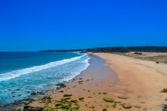 热带桃红色海滩 库存图片