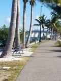 热带桥梁视图 库存图片
