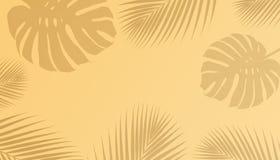 热带棕榈叶和monstera阴影与拷贝空间 库存例证