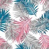 热带棕榈叶,密林离开无缝的传染媒介花卉样式背景 向量例证
