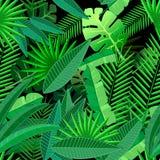 热带棕榈树叶子  无缝的样式 免版税图库摄影