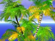 热带棕榈树,蓝天 免版税库存照片