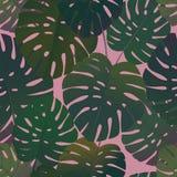 热带棕榈monstera留下无缝的样式 向量例证