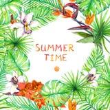 热带森林叶子和异乎寻常的花-狂放的兰花花 热带卡片,海报设计 水彩 图库摄影