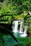 热带森林和瀑布在老挝 免版税图库摄影