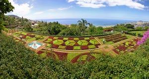 热带植物园全景在丰沙尔市,疯狂 免版税图库摄影