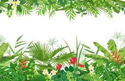 热带植物无缝的边界 免版税库存图片