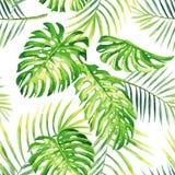热带植物水彩夏天无缝的背景 免版税库存图片