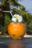 热带椰子鸡尾酒 免版税库存照片