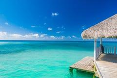 热带概念性海滩横幅 热带本质的场面 棕榈树和蓝天 暑假和假期概念 库存图片