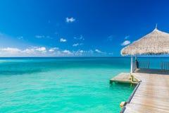热带概念性海滩横幅 热带本质的场面 棕榈树和蓝天 暑假和假期概念 库存照片