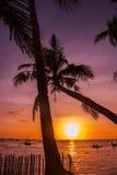 热带横向的日落 背景掌上型计算机天空结构树 使白色靠岸 博拉凯 菲律宾 库存照片