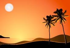 热带横向的晚上 皇族释放例证
