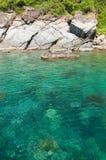 热带水和石头 免版税库存图片