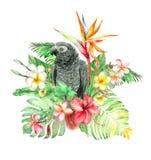 热带水彩花束 图库摄影
