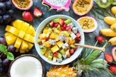 热带水果在碗的沙拉用芒果和pitaya 库存图片