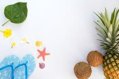 热带水果构成用菠萝、椰子、拖鞋、壳和海星 免版税库存图片