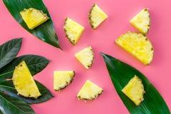 热带水果背景 在大叶子前面的Pinneapple切片在桃红色背景顶视图 库存照片