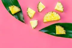 热带水果背景 在大叶子前面的Pinneapple切片在桃红色背景顶视图copyspace 库存照片