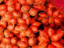 热带水果,红色外壳喜欢蛇皮 库存照片