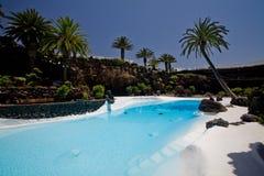 热带池的游泳 免版税库存图片