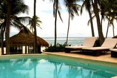 热带池的游泳 图库摄影