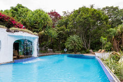 热带池的游泳 免版税图库摄影