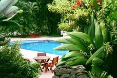 热带池的设置 免版税库存照片