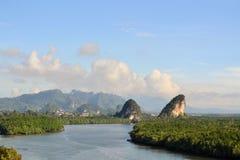 热带河和美洲红树在Krabi,泰国 免版税图库摄影