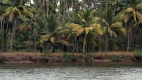 热带河在好日子 影视素材