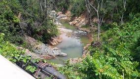 热带河在波多黎各 免版税库存图片