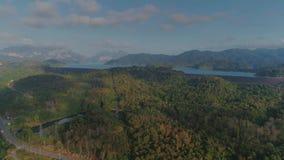 热带泰国cheo lan长的国家公园密林日落寄生虫飞行、狂放的山自然树和棕榈 股票录像