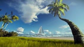 热带海岛、棕榈树吹在风的和游艇航行 股票录像